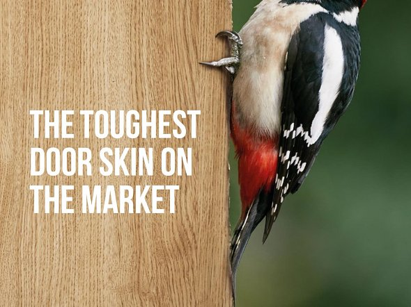 3D Laminates Look To The Woodpecker!